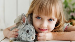 Kind Hase