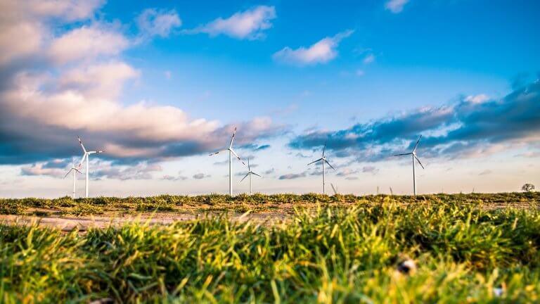Windrad Natur